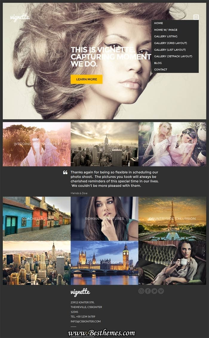 Vignette WordPress Theme - CSSIgniter