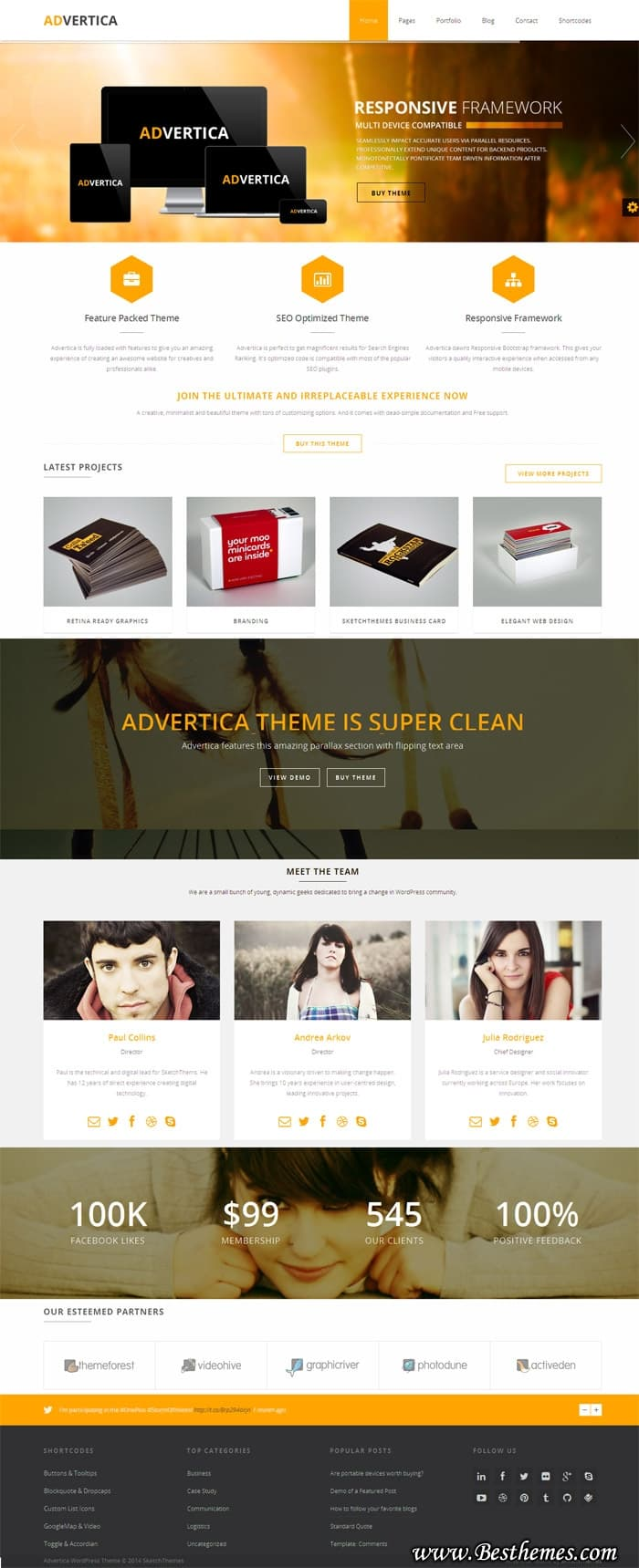 Advertica-WordPress-Theme